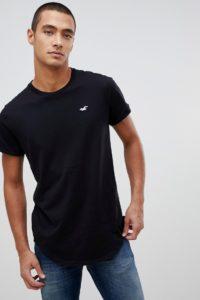 Hollister - Einfarbig schwarzes T-Shirt mit abgerundetem Saum und Möwenlogo - Schwarz - Farbe:Schwarz