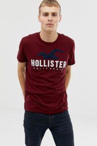 Hollister - Auf der Brust mit Möwenlogo besticktes T-Shirt in Burgunder - Rot - Farbe:Rot